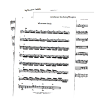 14 Original Compositions by Timothy Seaman in Basic Sheet Music (PDFs)