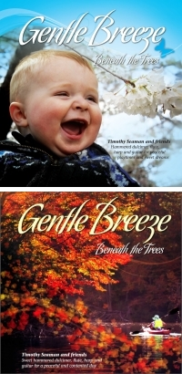 Gentle Breeze Beneath the Trees Album Cover